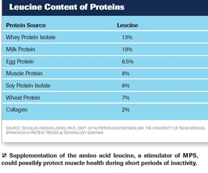 Nutrition Strategies to Protect Muscle