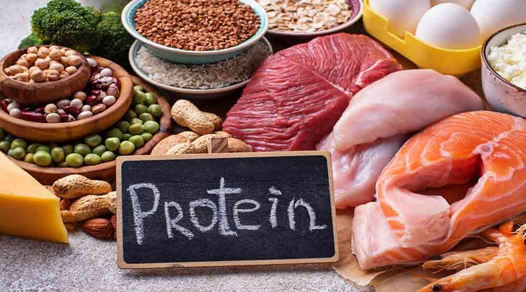Consumer Views on Protein
