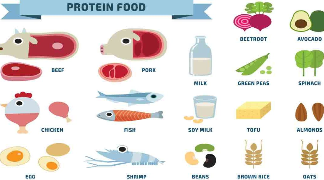 RDA Determination and Over or Under Consumption of Proteins