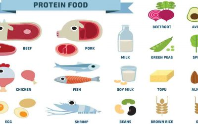 Dietary Protein Consumption
