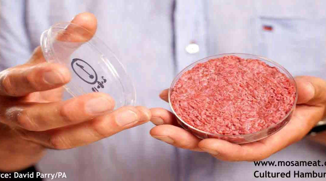 Cellular Technology Opens a Pathway to Clean Meat Alternatives
