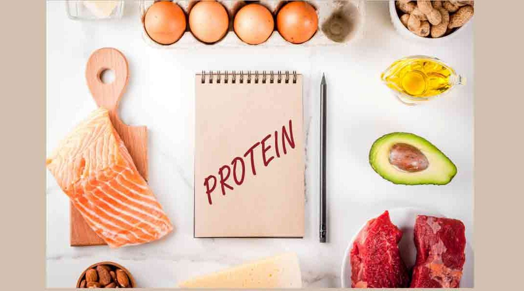 Consumer Market Opportunities in Protein