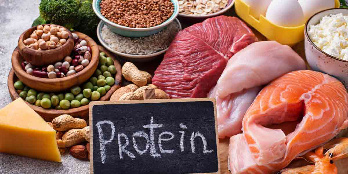 A Healthy Perspective: Protein Trends and the American Consumer .