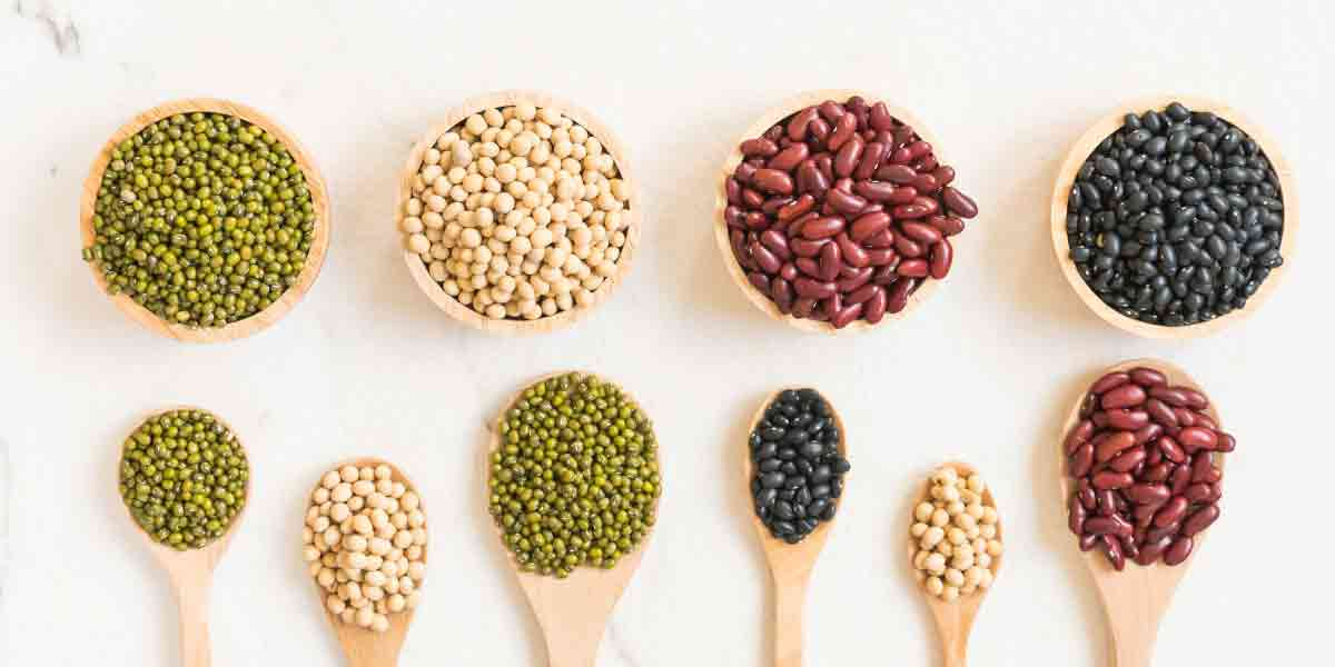 Pulses provide alternative ingredient sources for animal proteins.