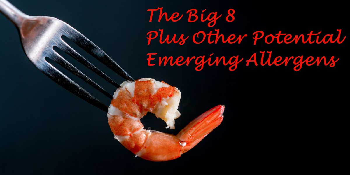 Shrimp (shellfish) represents one of the so-called Big 8 allergens; however, any protein has the potential to become an allergen - a fact food manufactureres must take under consideration when working with novel protein ingredients.