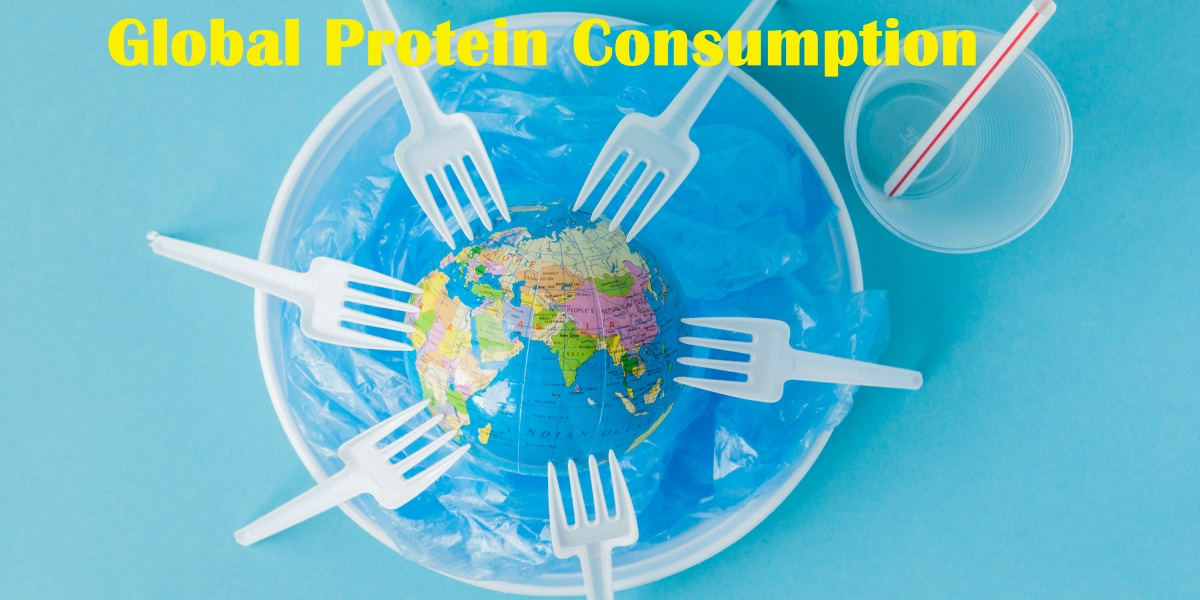 Cultural differences and customs often account for global differences in protein consumption.