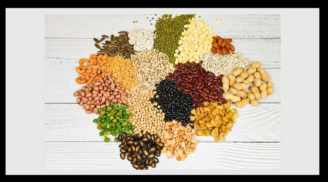 Protein Savvy Food Formulators See Increased Use of Diverse Proteins