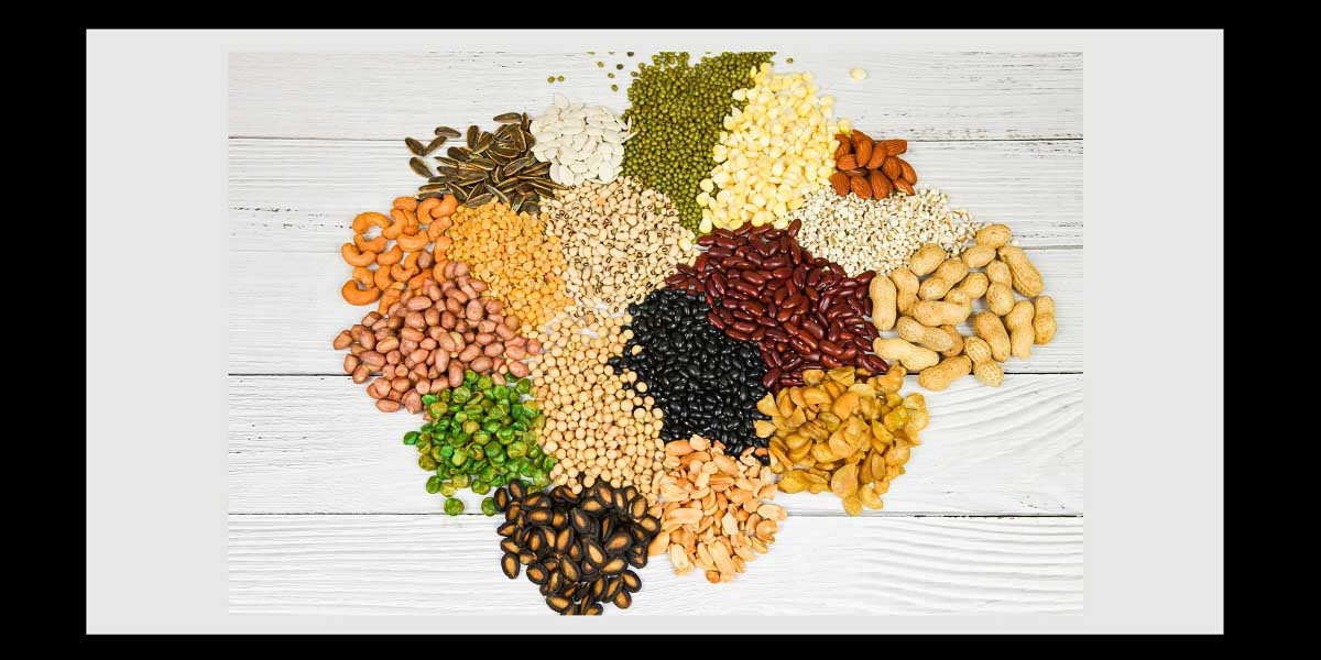 PROTEIN-Savvy-Food-Formulators-See-Increased-Use-of-Diverse-Proteins-2015-FEATURE